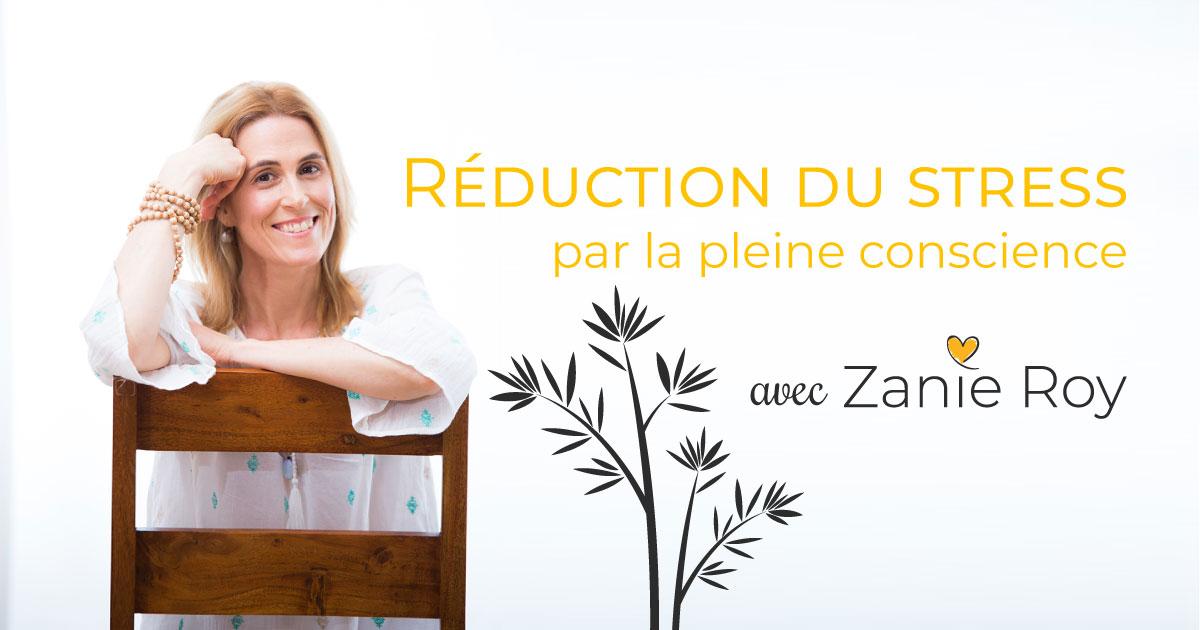 Zanie reduction-du-stress.jpg