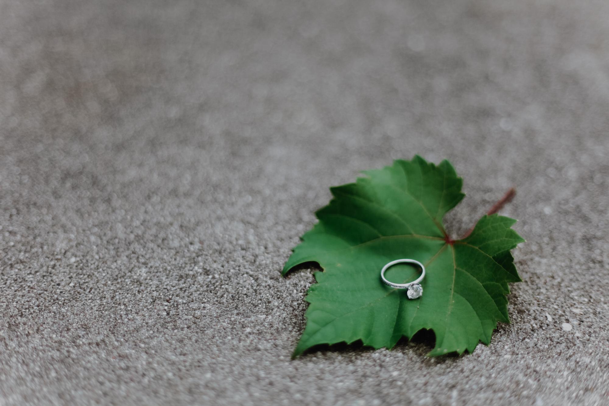 Build Wedding Photography Portfolio with No Clients