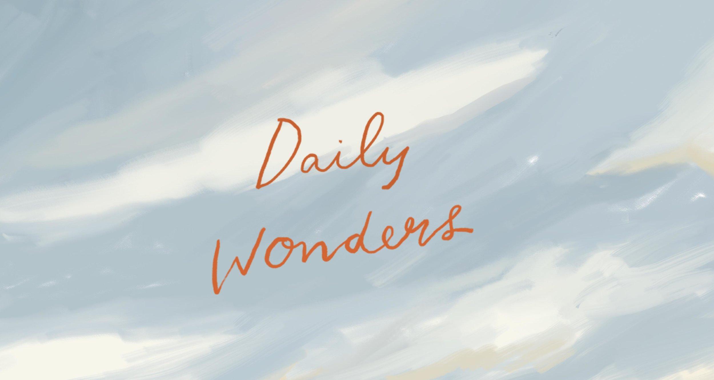 small_wonders-banner-squarespace.jpg