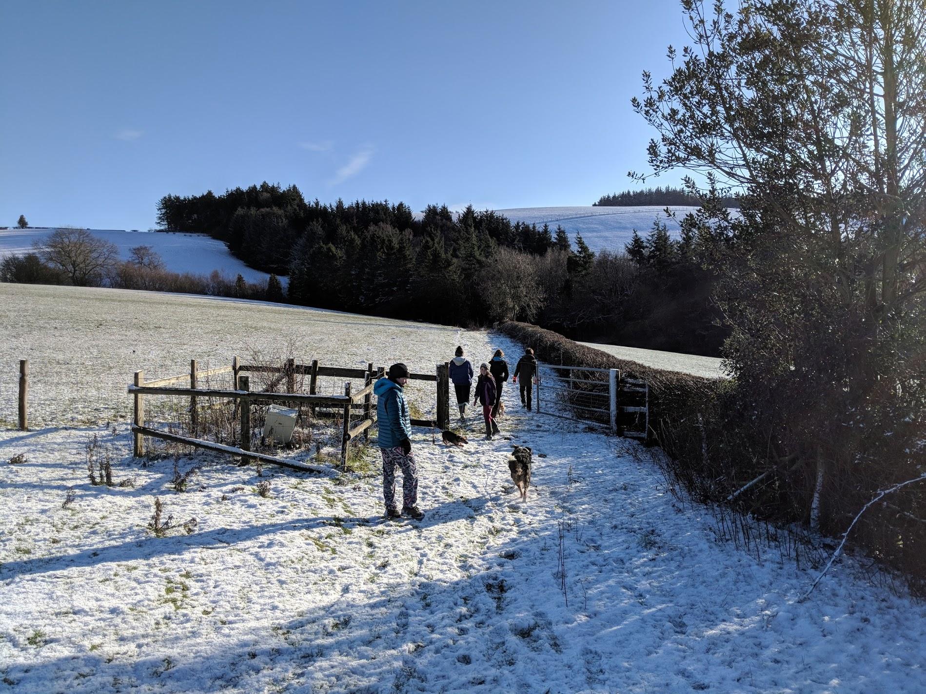 camp farm.jpg