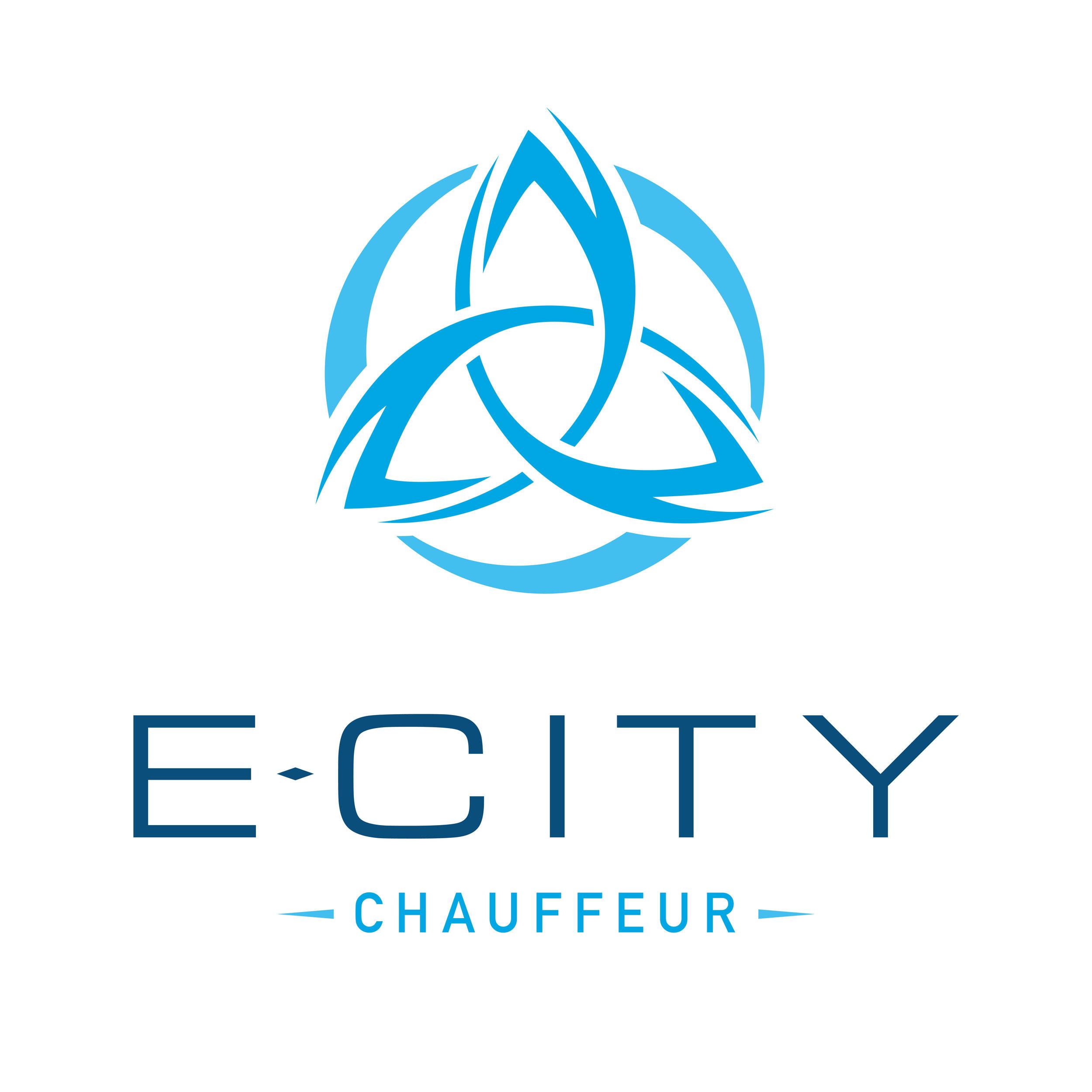 E-City Logo LIGHT - High Res-01.jpg