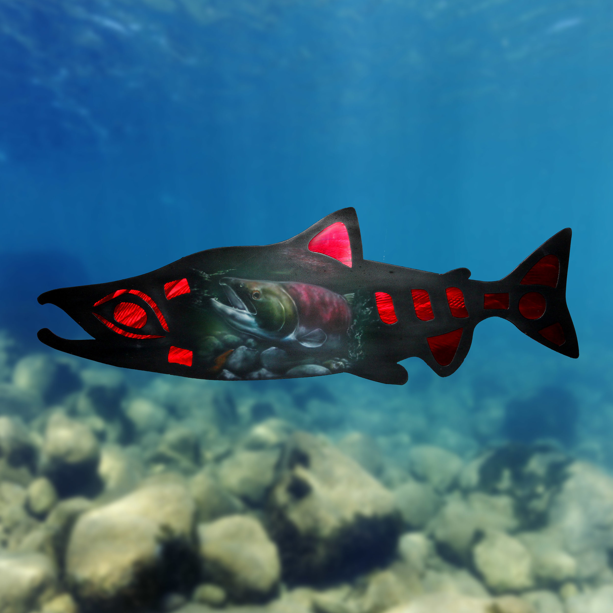 Haida Salmon