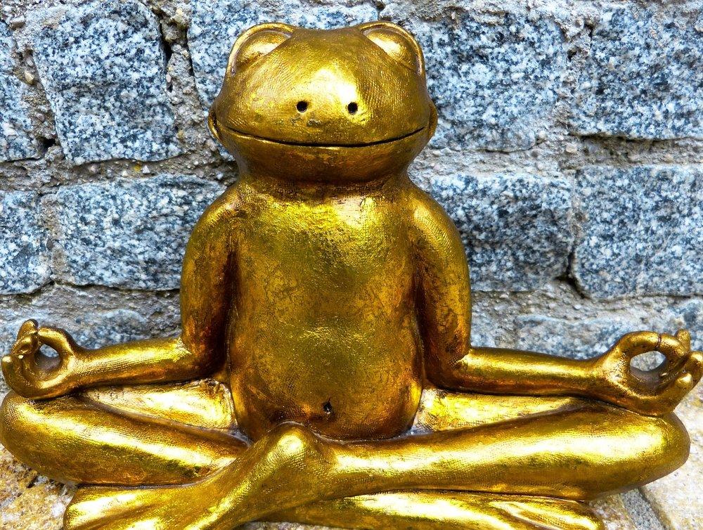 Mindfulness Coaching -