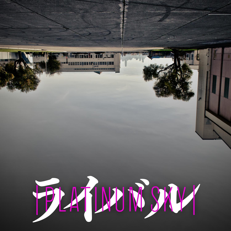 PLATINUM SKY COVER.png