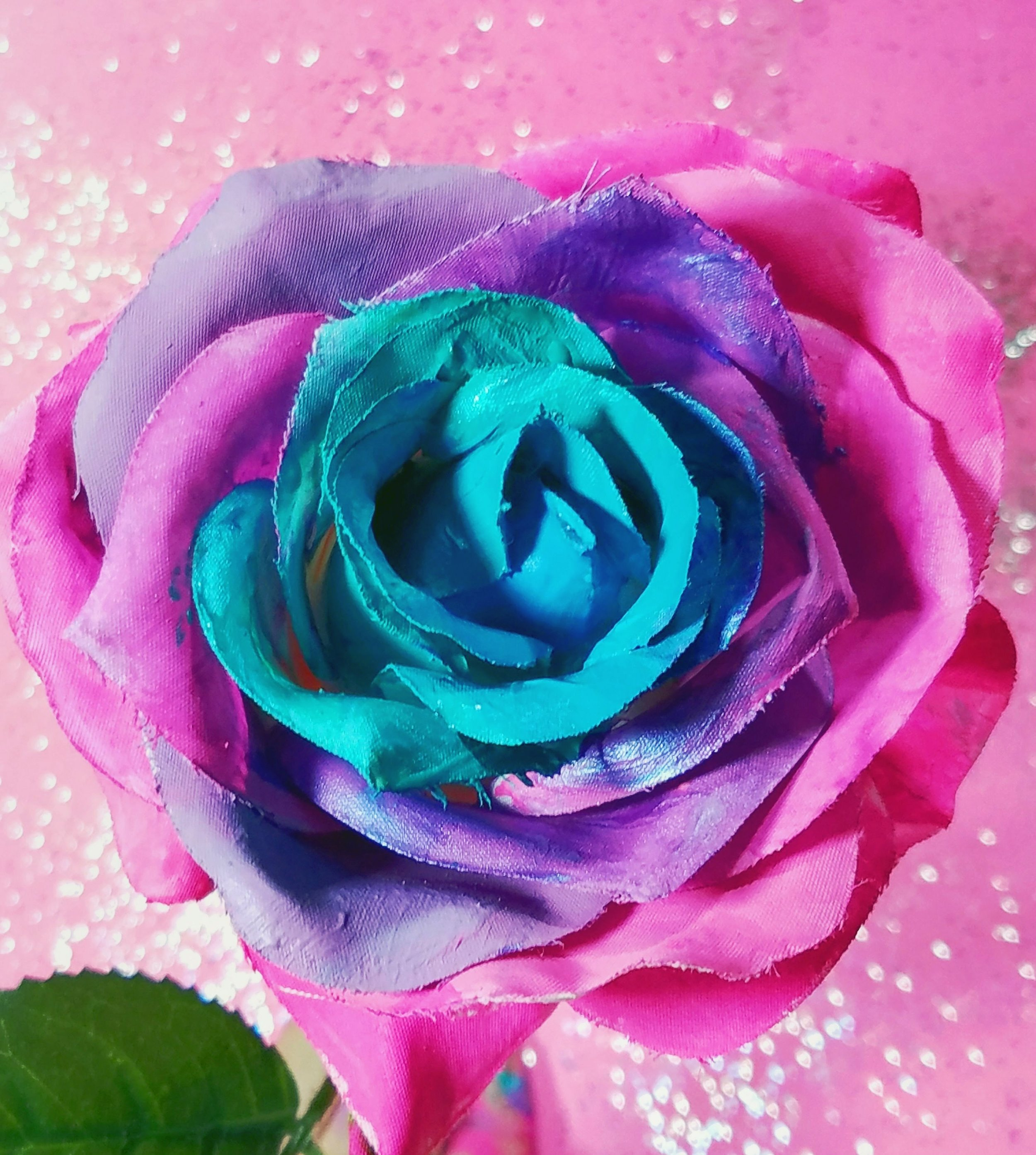 ...or a totally non purple rose.  Way to go Sherstin.