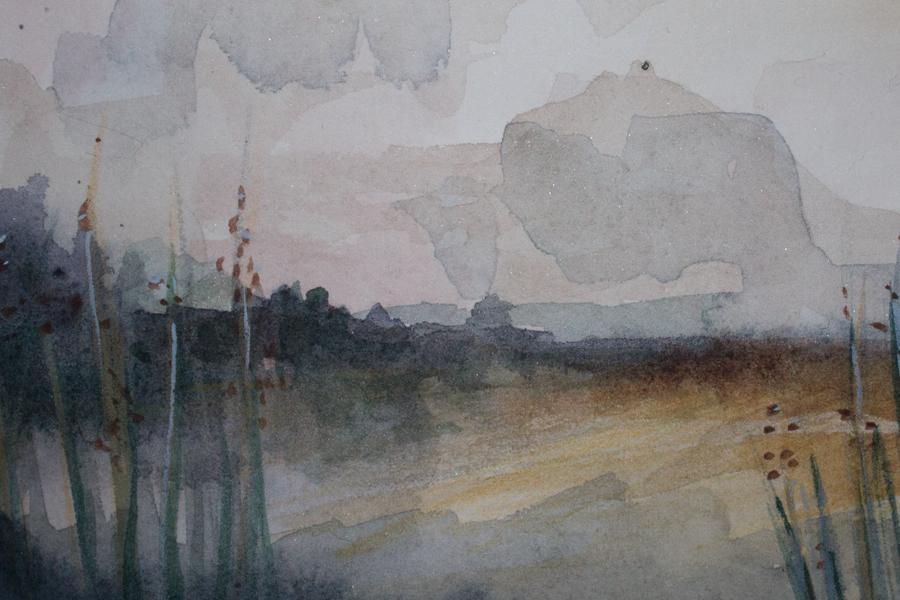 Paint Elevations
