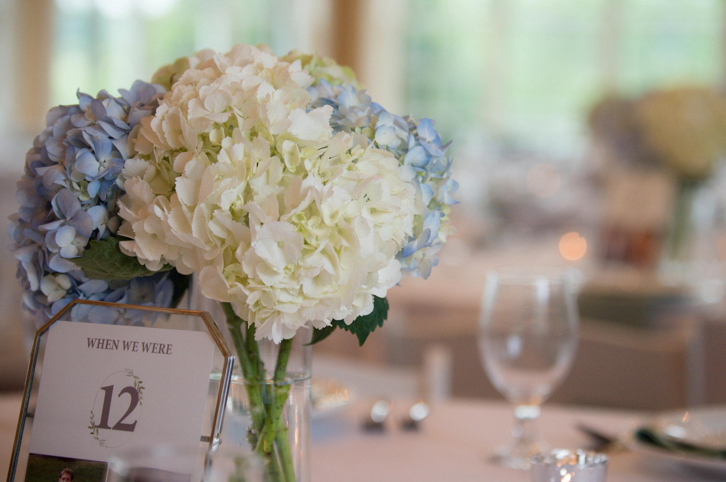 blue-ridge-wedding-ashley-nicole-photography-restoration-hall-crozetphotography-restorationhall-charlottesville-wedding_details-33.jpg
