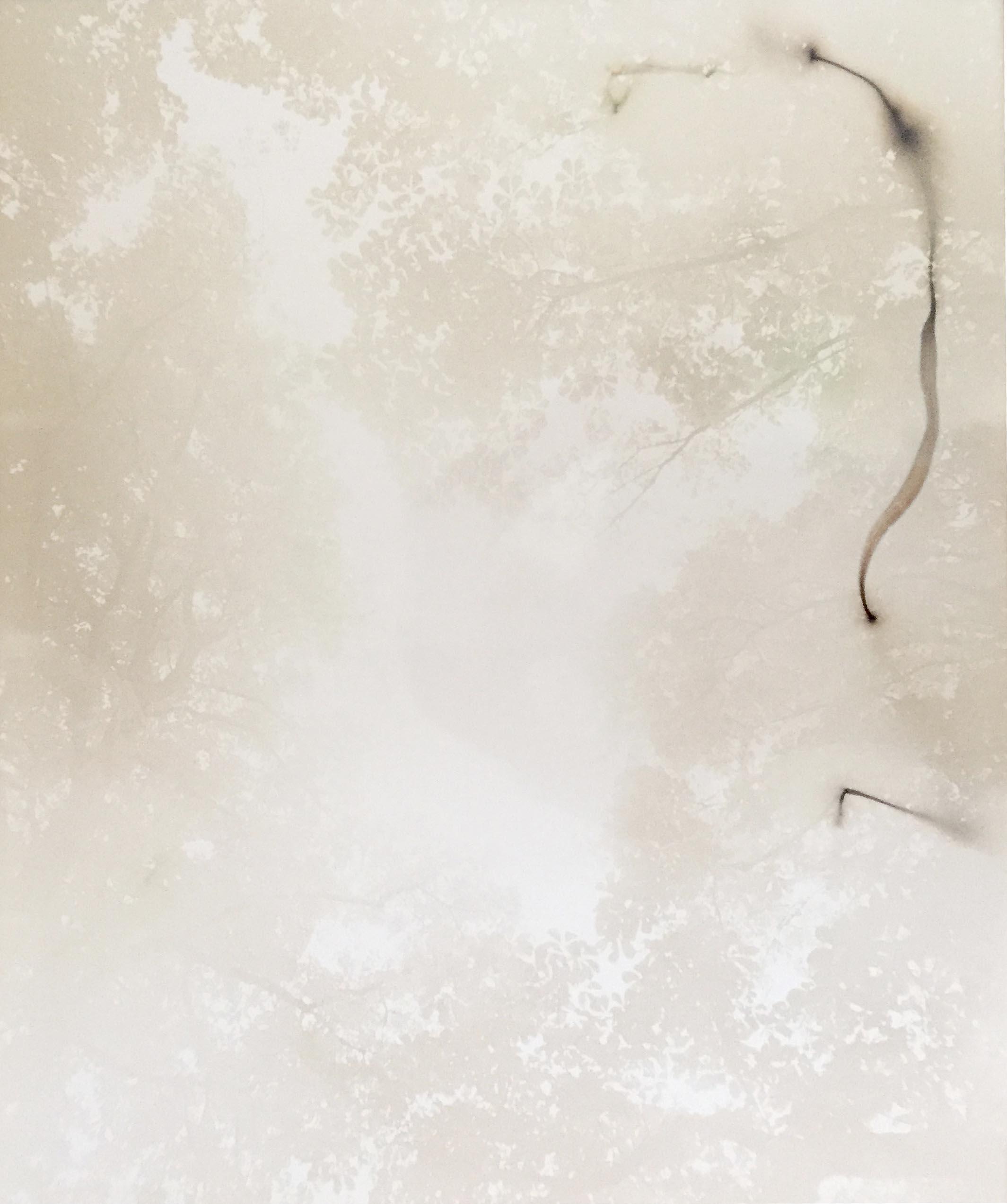 TILLMANS_ThreeParkWorkPiece_White.jpg