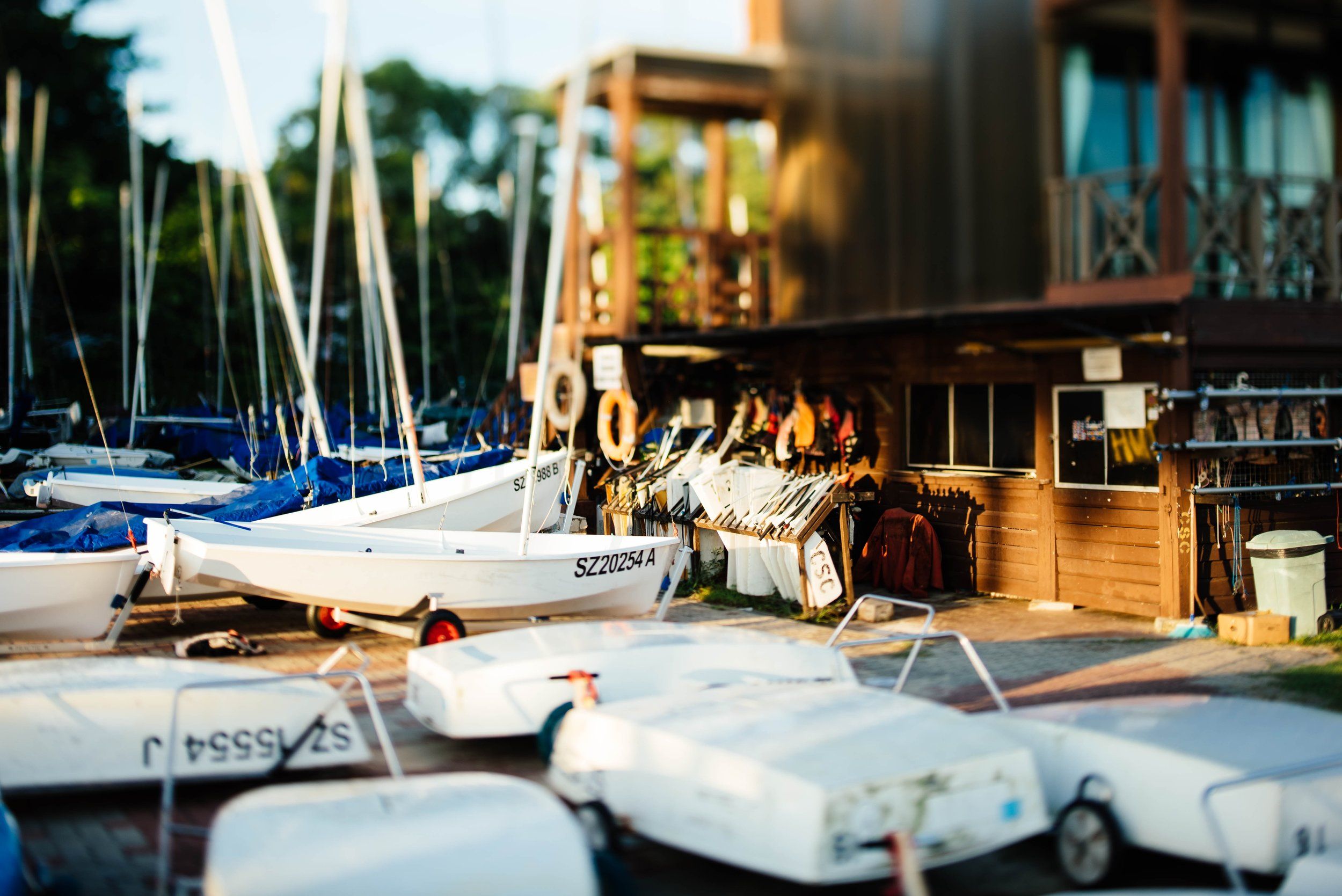 Boats  - We have a special place in our hearts for people who buy boats. We deal in bulk every day, drop us a note and we will send over our courier.