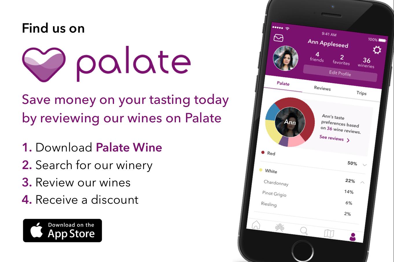 Consumer app flyer