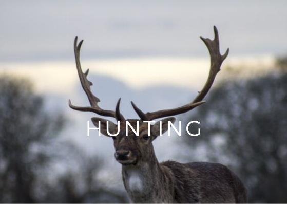 Hunting.png