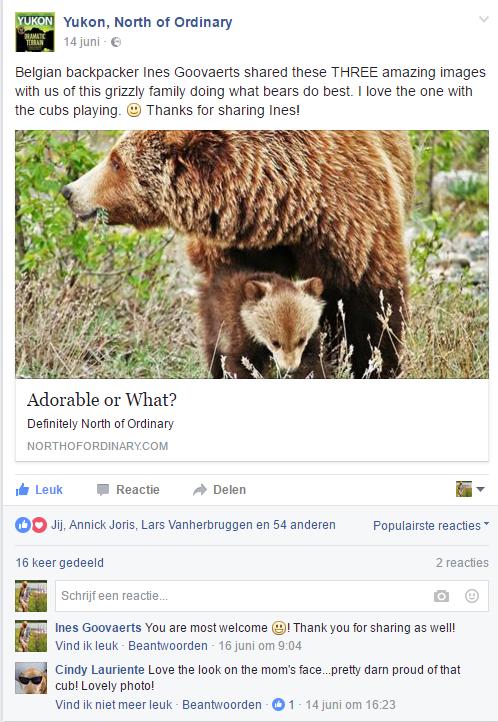 Yukon, North of 14 jun 2016 fb.png