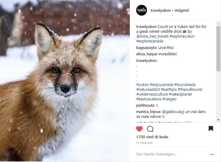21 feb 2018 Travel Yukon insta.jpg