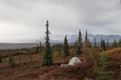 Campsite at Wonderlake, Denali, Alaska