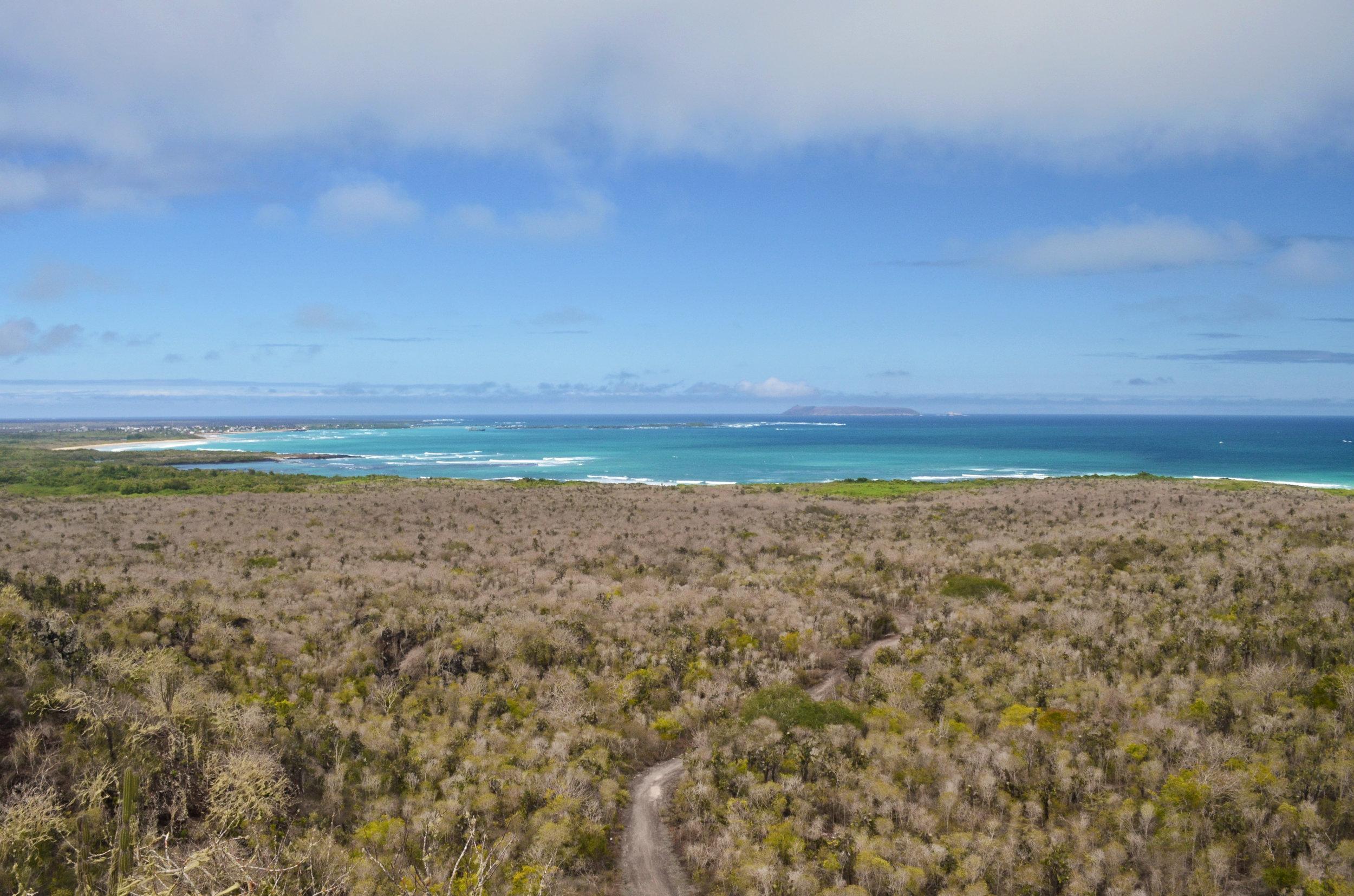 The arid landscape of Isabela Island