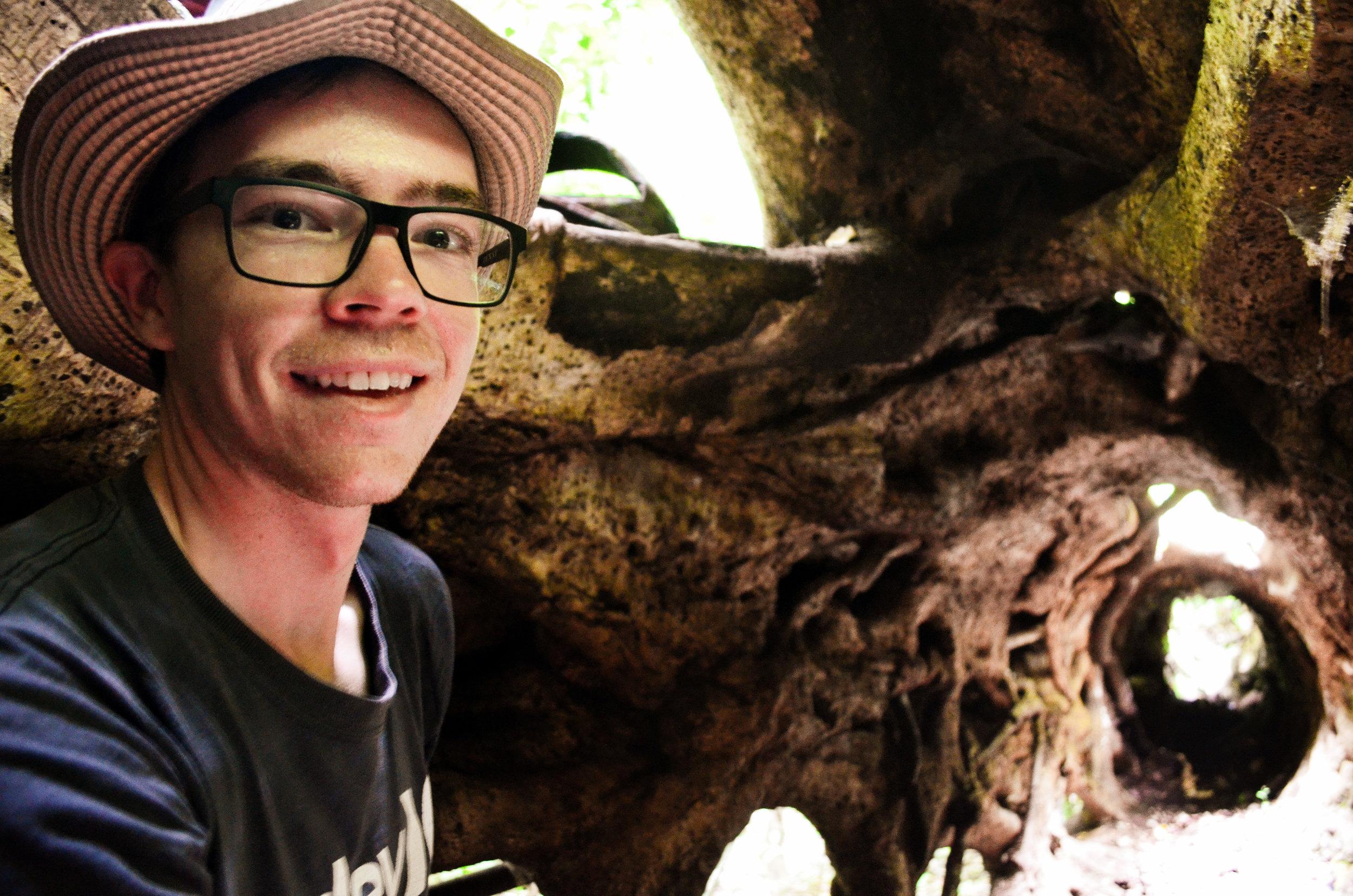 Jared inside a matapalo tree
