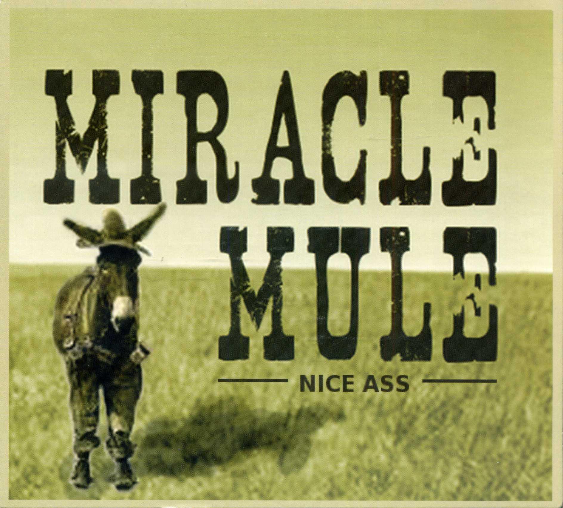 MiracleMule_NiceAss001.jpg