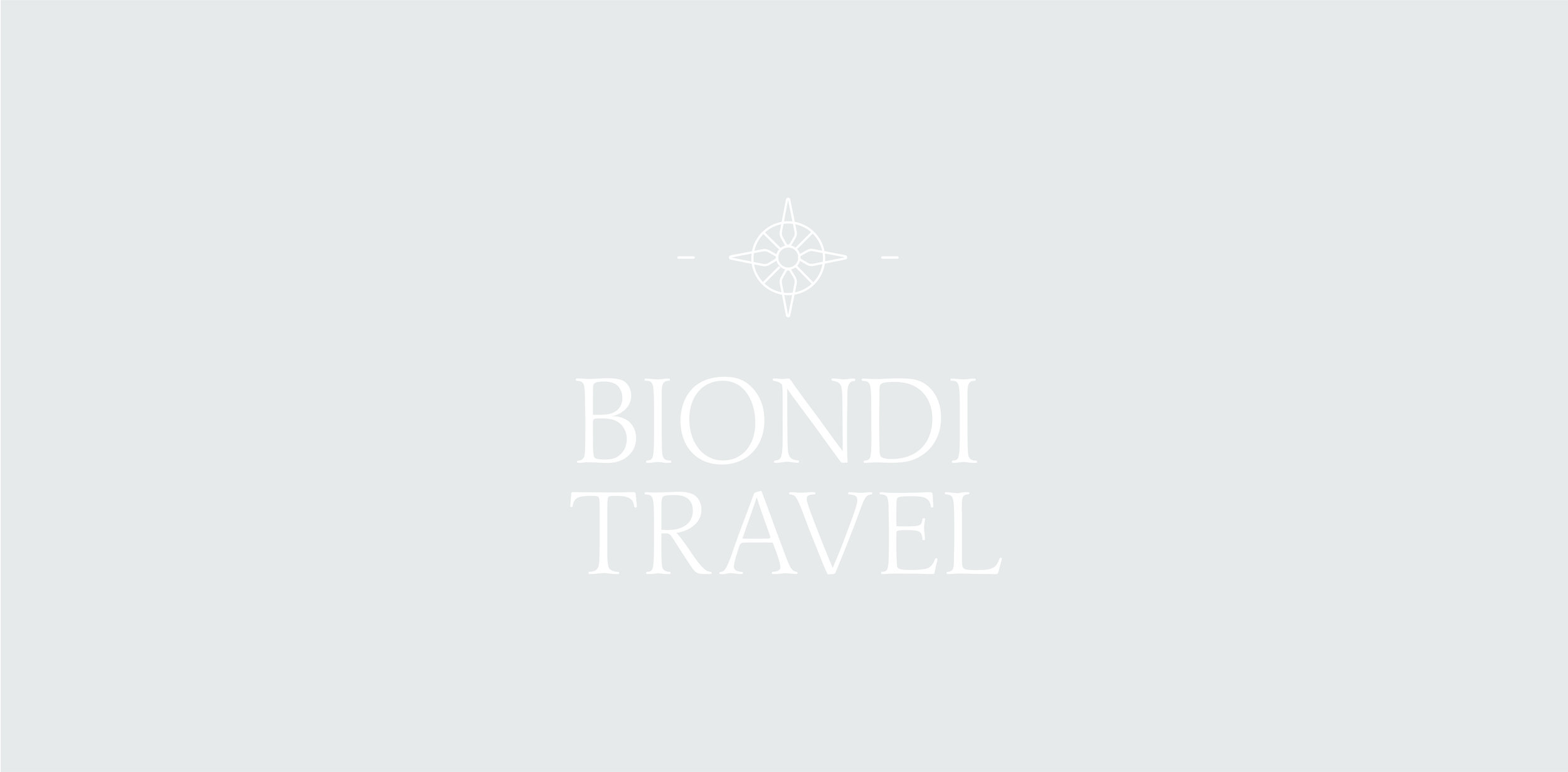 Small Travel Business Full Branding Package & Logo