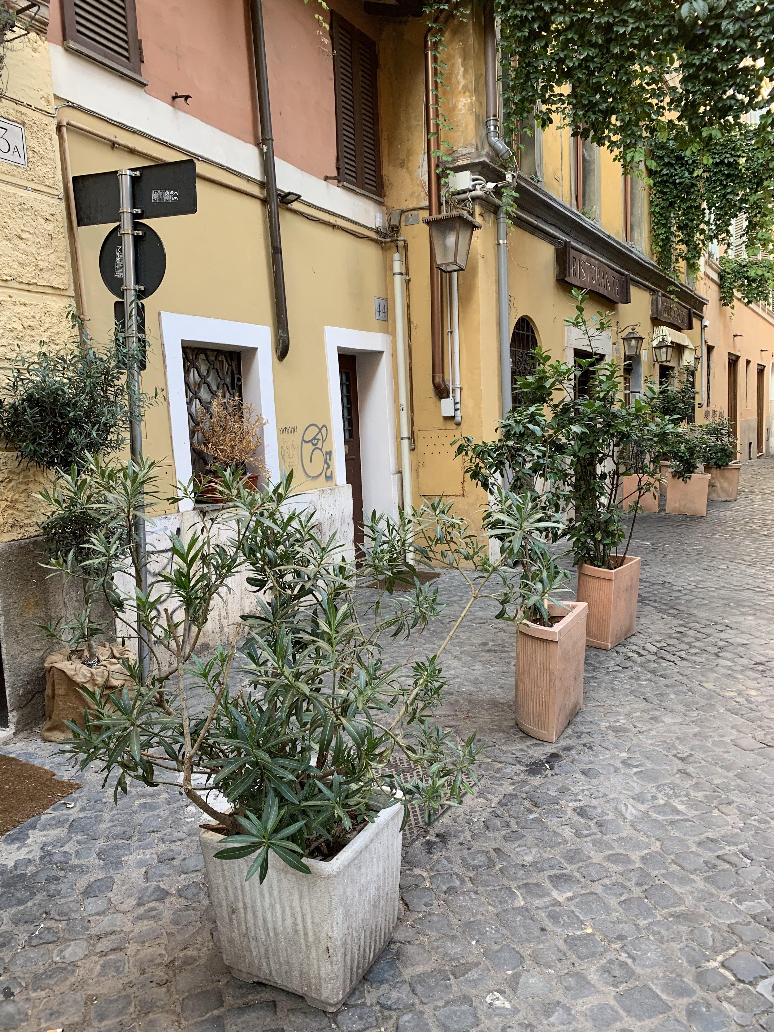 Rome Italy photography, Rome travel guide, Rome travel diary, Sorrento Italy photography, Sorrento Italy, travel Italy photography, pantheon, colosseum, trevi fountain, da enzo