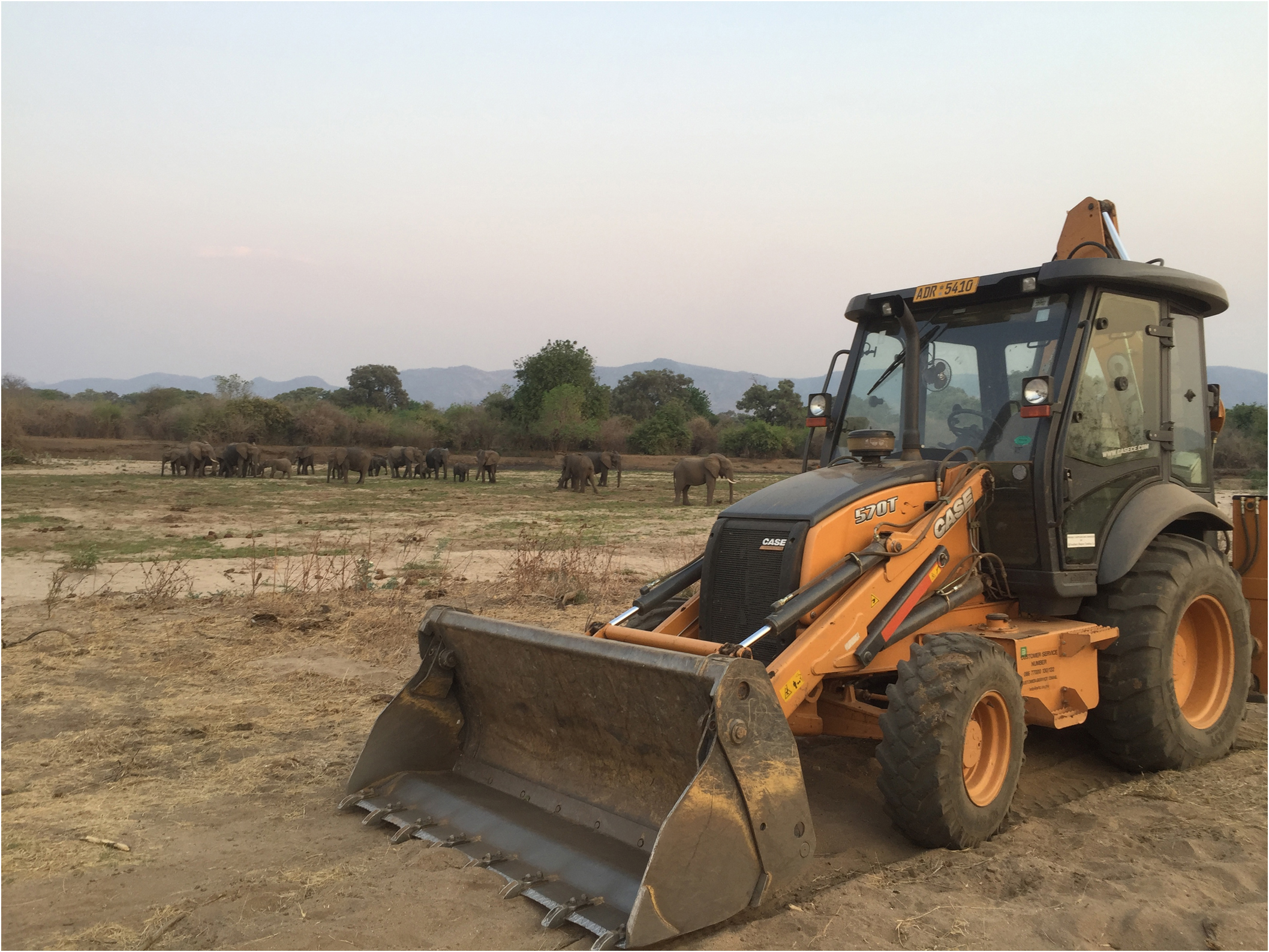 TLB road clearing machine & eles.jpg