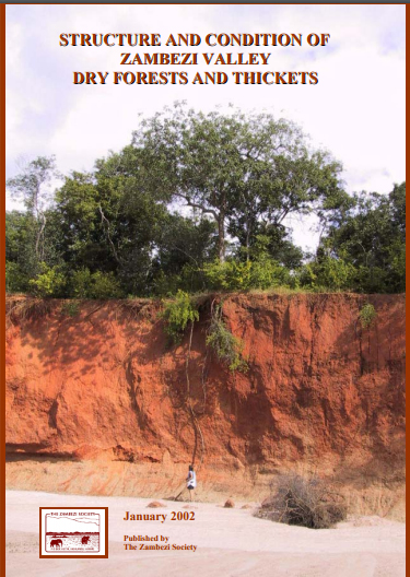 Dry Forests Study.jpg