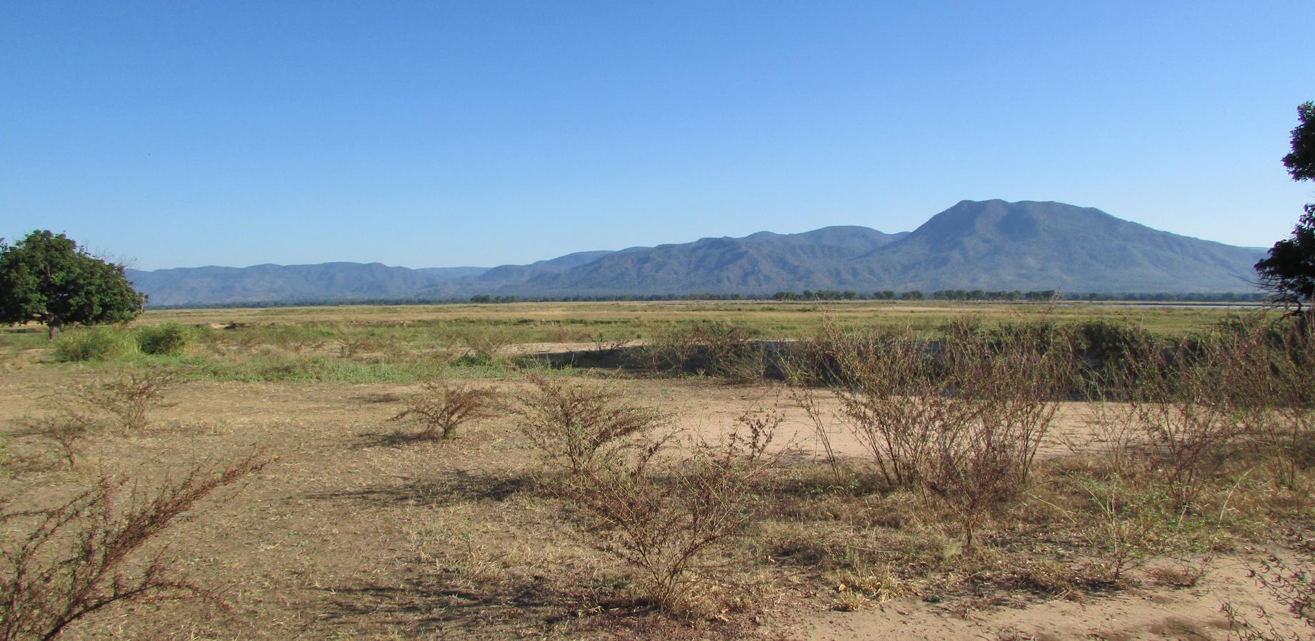 View of the Zambezi River from Nkupe site.jpg