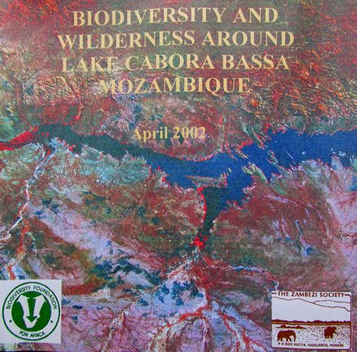Cabora Bassa report.jpg