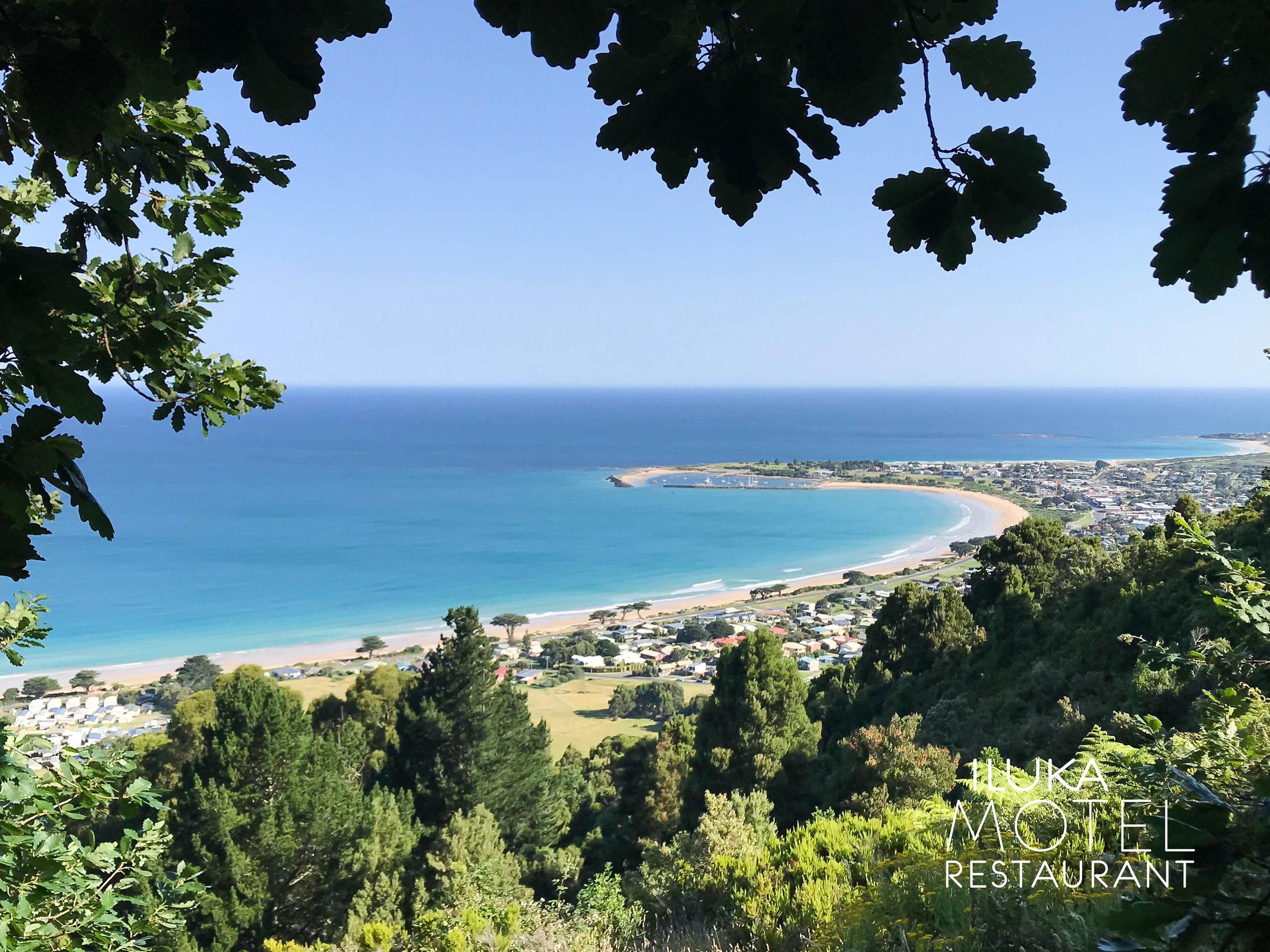 Apollo Bay Lookout.jpg