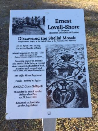 shellal02-ernestlovellshore.jpg