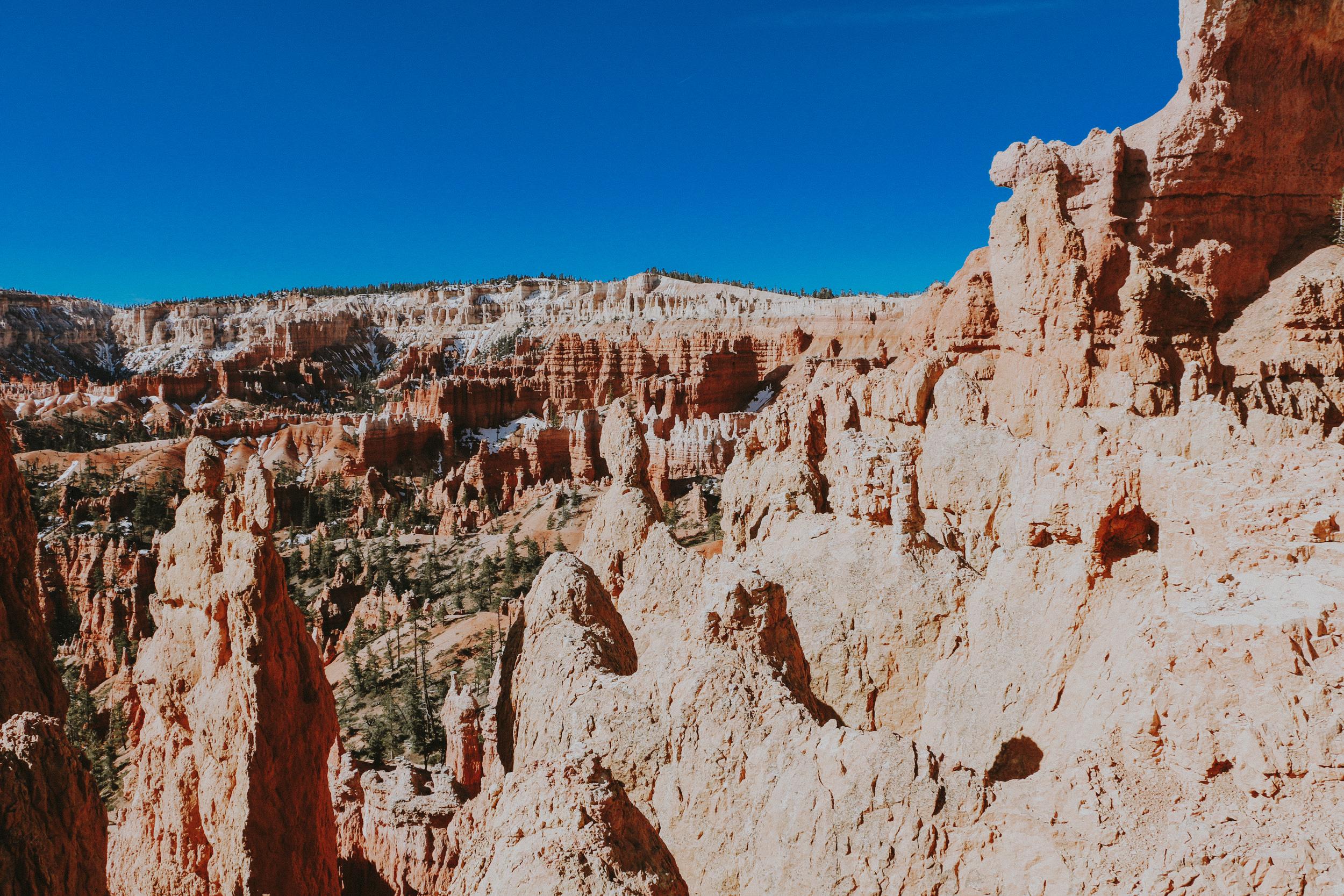 hello adventure co - utah and arizona national parks roadtrip from PNW-3048.jpg