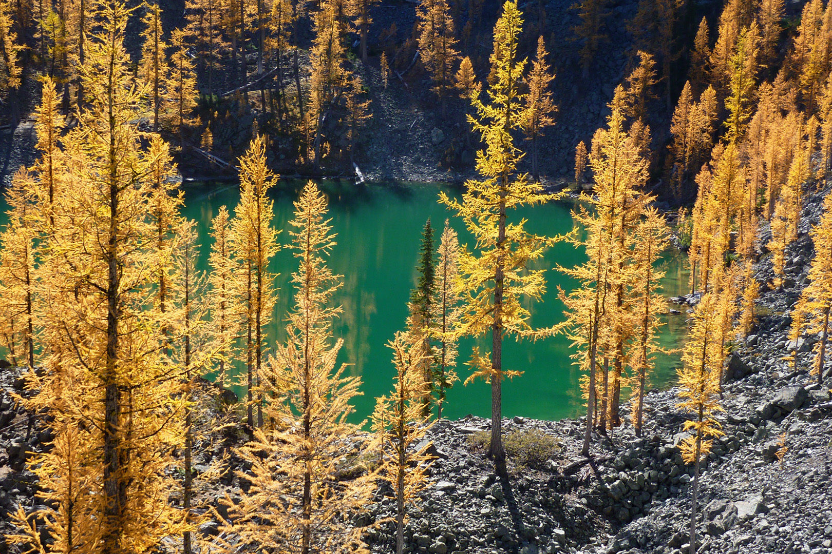 Copper Glance Lake - If I don't get back to Winthrop for a few months, I definitely will try to visit here for larch season!