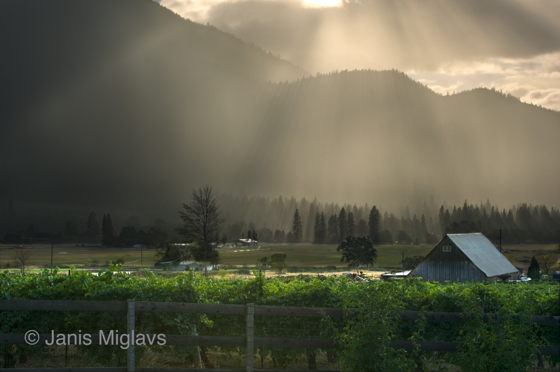 Clearing Storm over S. Oregon Vineyard