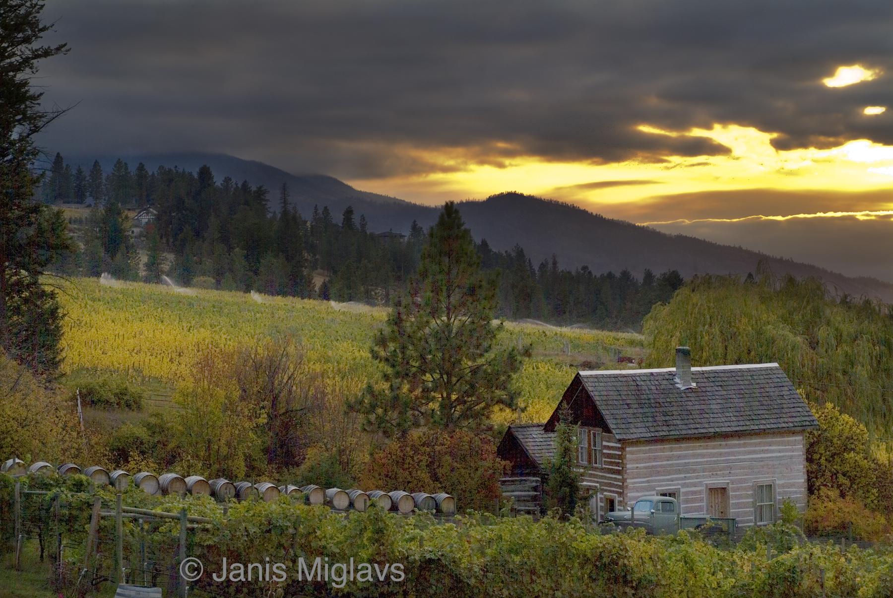 Canada Okanagan Cabin in Vineyard