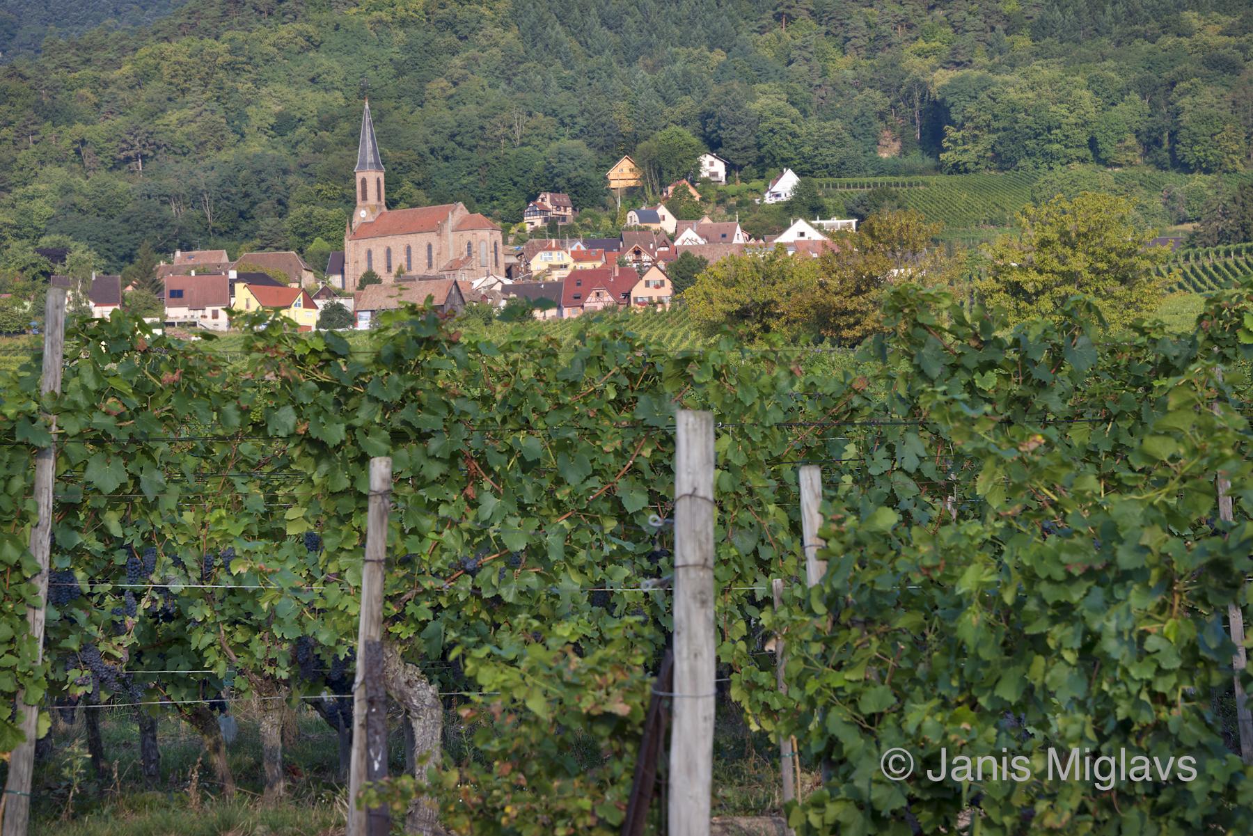 France Husseren les Chateaux Village