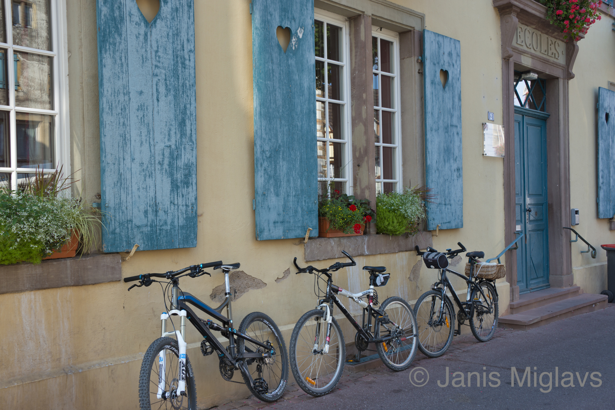 France Bicycles in Equisheim