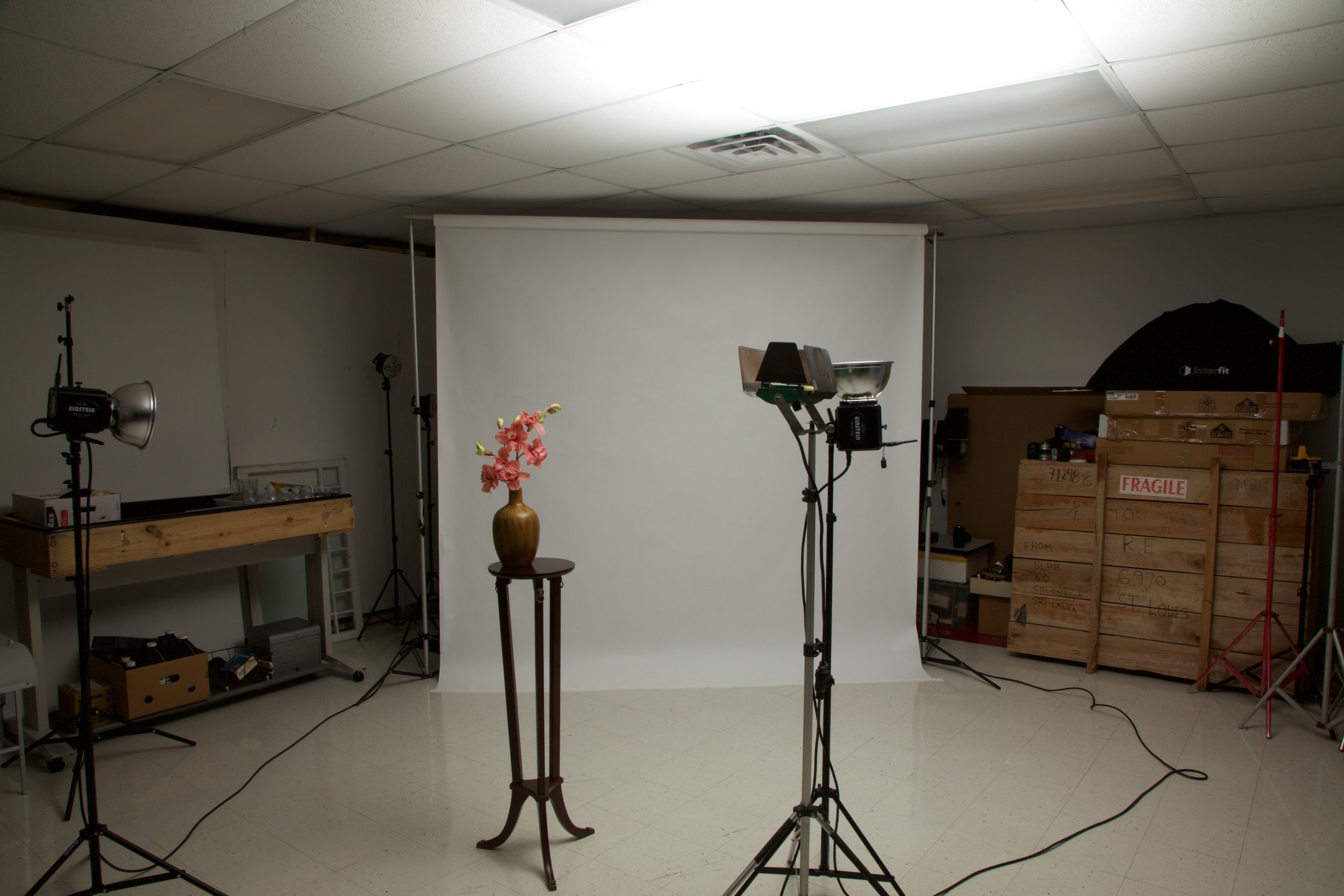 640 watt second studio flash - 1/125th second at f22 ISO 100 - overhead lights not visible
