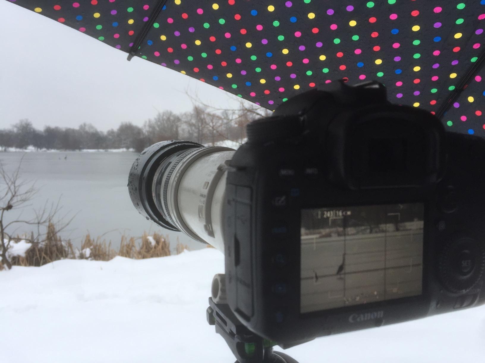 Under the umbrella with my camera.