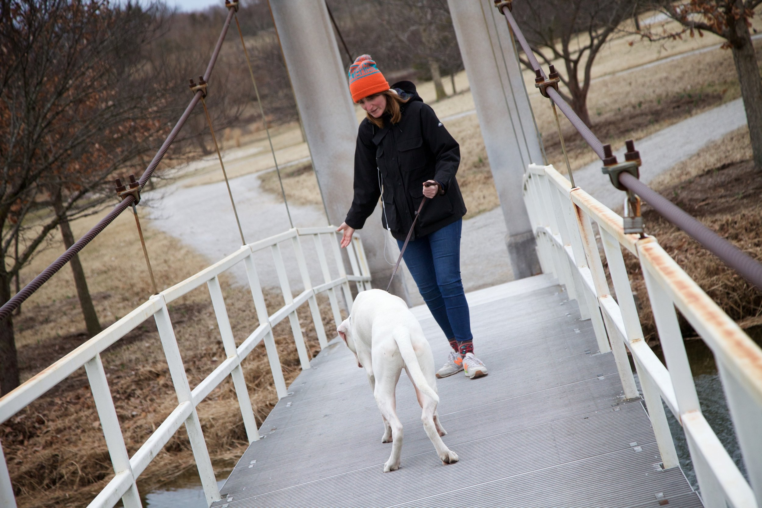Scairdy dog navigates the suspension bridge with lots of gentle coaxing from his owner.