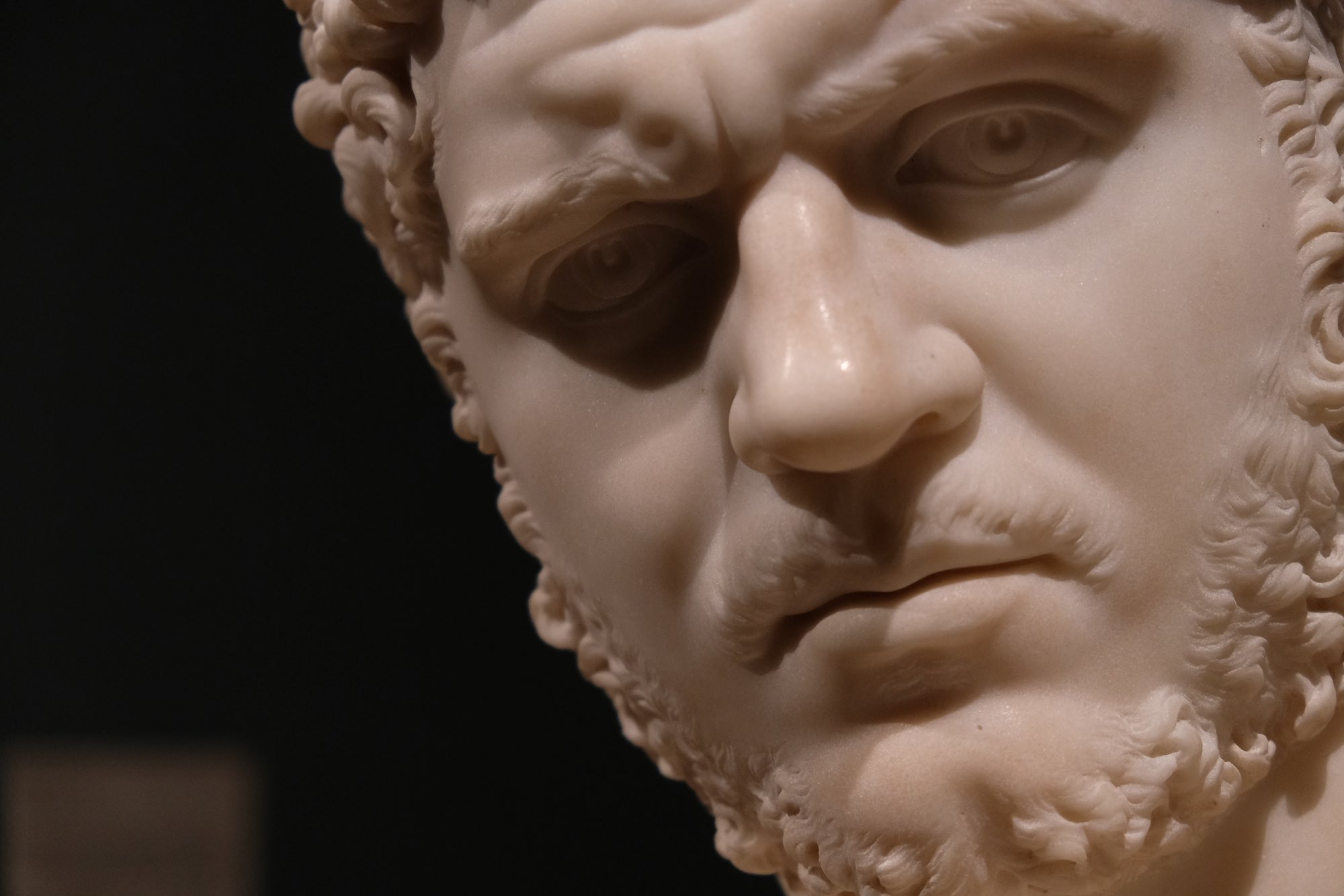 Day 109 - An ancient roman lives on in the Saint Louis Art Museum.