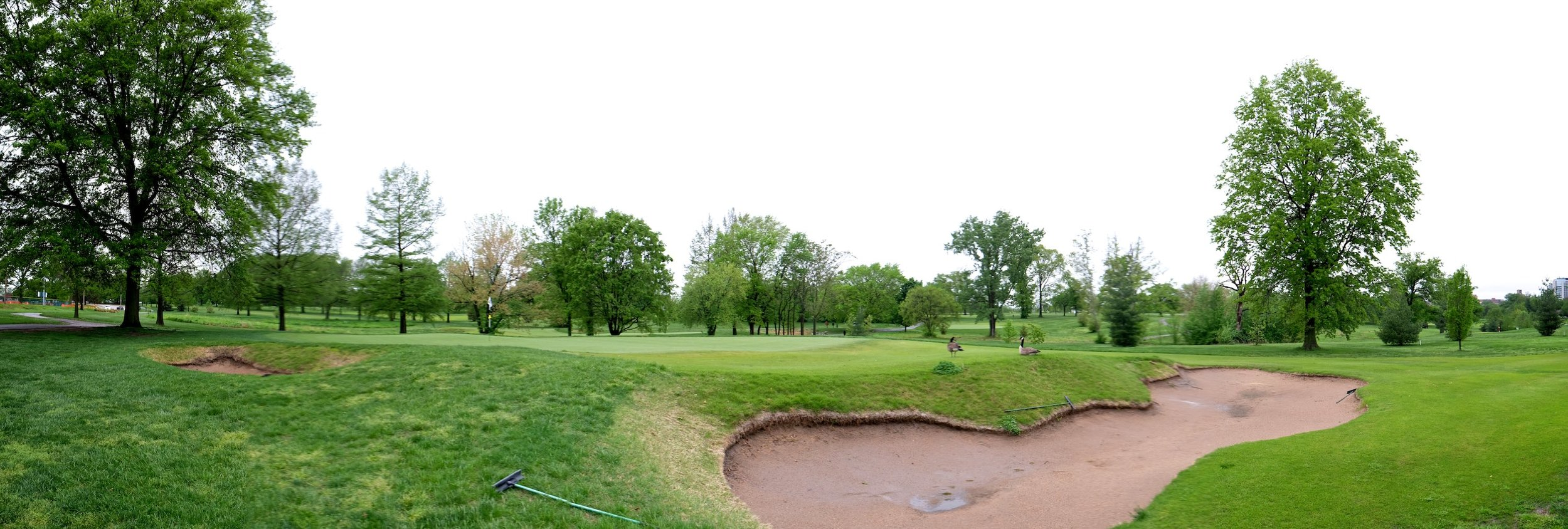 On the Highlands golf course. Click on image for more photos.