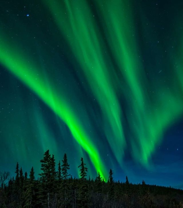 When the northern lights rocks the sky you have to be ready. Moments like this can happen in mere seconds. Other times you have hours to work with a storm and adjust composition.  #yesyukon #travelyukon #opcmag #ohcanada #canada150 #yukon #topoftheworld #northernlights #having_fun #bigkid #bucketlistadventures