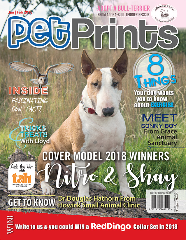 Pg01 pet prints cover _JAN_FEB_2017.jpg