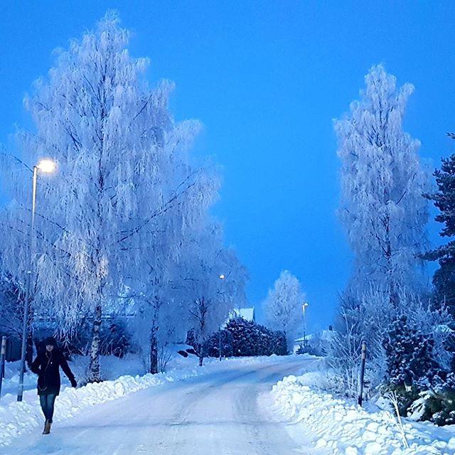 "No wonder that this is often called ""The Blue Hour"". From #romerike in #norway this morning. Minus 14 degrees celsius ❄⛄ #nofilter #norway  #norwegianwinter #jessheim #romerike #akershus #tourism  #norwaypic  #winterwonderland #january #picoftheday #winter  #january"