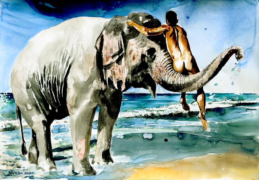 BIG ELEPHANT BATH #2