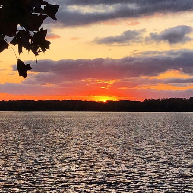 """When the sun sets on your life what will you be most grateful for?"" Karen Craggs-Milne⁣ ——⁣ Today we wrapped up our thanksgiving weekend and headed home from the cottage. On our way back we drove past the spot on the highway where I had a serious car crash in July 2017 and miraculously survived. ⁣ ⁣ I wasn't prepared for all the memories and emotions that flooded back as we passed the spot. It was an incredibly traumatic experience for myself and my family years back. ⁣ ⁣ As painful as it was, I am so deeply grateful for that crash. It was a huge wake up call for me and it set me on a different path. I realized all the things I valued were not as important or meaningful as I thought because I wasn't living in alignment with what mattered MOST to me.  Yes - I helped raise $100 million in 3.5yrs. Yes,I was promoted to a leadership role within my first year and was being considered for a VP position. Yes, I was on a plane almost every month, often flying business class to work with influential leaders on amazing initiatives. Yes, I was a successful modern woman by all measures. ⁣ ⁣ Yet NONE of it mattered when I held it against not having the chance to be with my kids or husband again. THEY were what mattered to me and I had put them second for far too long. ⁣ ⁣ That day in 2017 I set out to redesign my life with what matters to me at centre of it - my kids, my husband, my Self and doing meaningful work with the freedom to balance my life as I need to. ⁣ ⁣ It is a work in progress but I can honestly say that I am way more aligned in my life than I have ever been and SO much happier than I was in 2017!!!! I am SO grateful for that wake up call and so grateful that it wasn't too late for me to find my way. ⁣ —-⁣ What about you? Are you living in alignment with what matters most to you? ⁣ —-⁣ #thanksgiving2019, #givingthanks, #consciousequality, #consciousequalityacceleratorprogram , #karencraggsmilne, #consciousliving, #gratefulforlife, #gratefulforfreedom, #lifebydesign, ##myspiritualawakening, #consciouschoices, #wakeupcall, #whatmattersmost, #alifethatyoucanbeproudof, #makingitcount, #hiddenblessings, #lifelessons, #wisewords, #authenticliving"