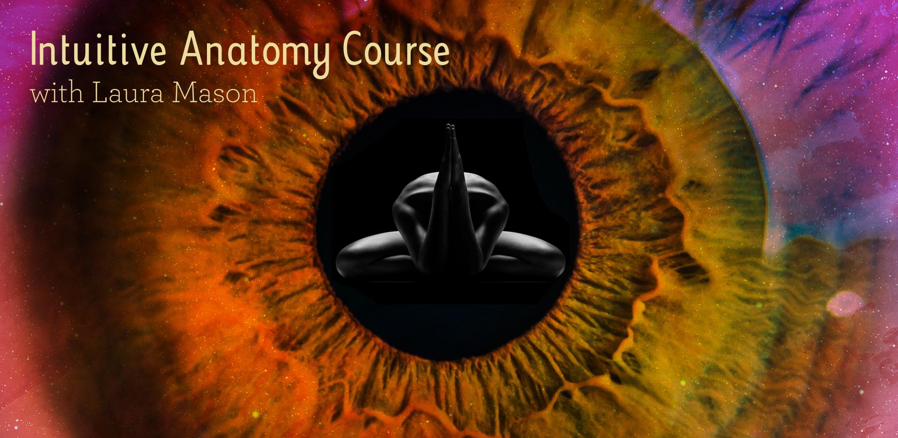 Laura Mason Web images-NEW Intuitive Anatomy .jpg