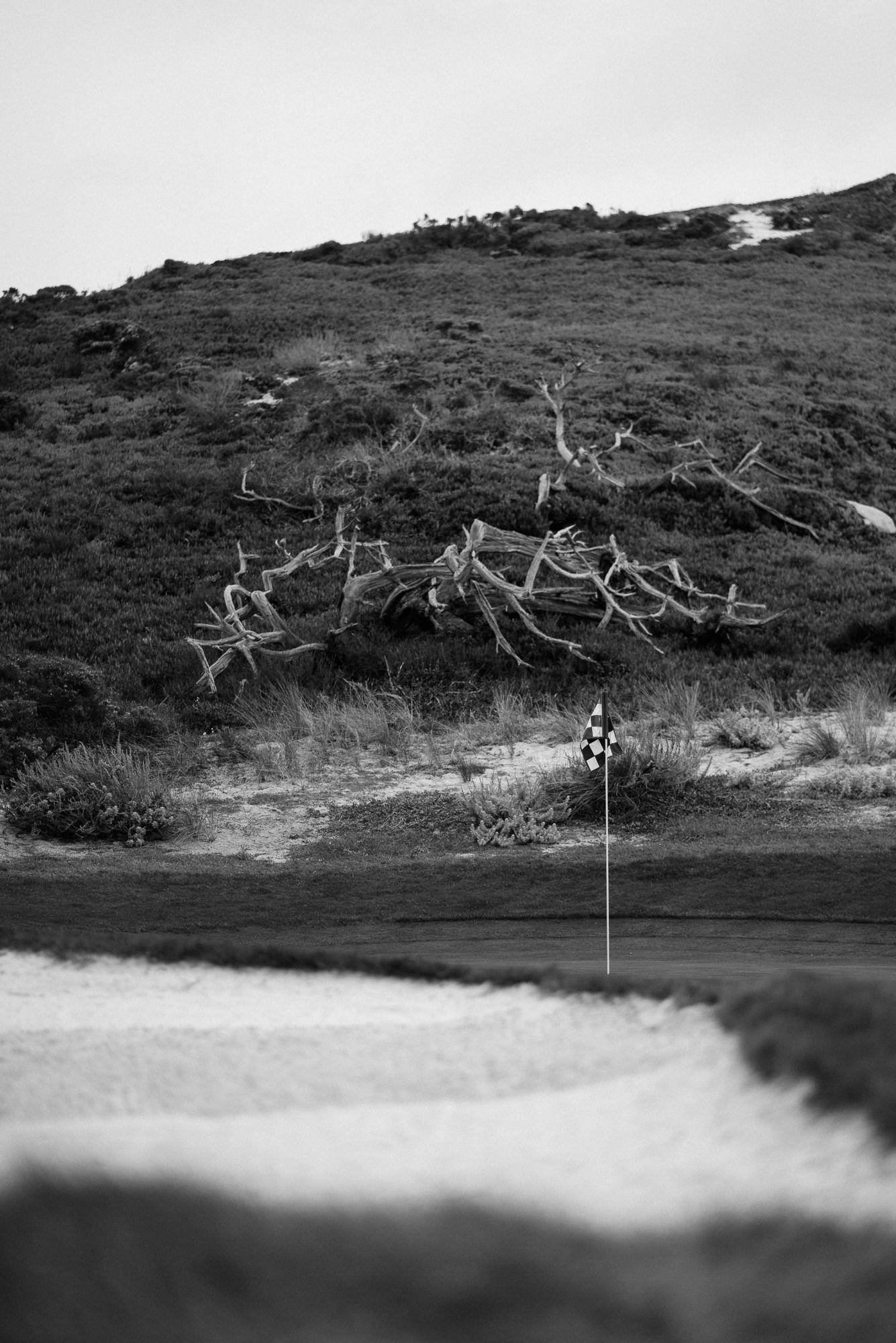 Cypress Point-9491.jpg