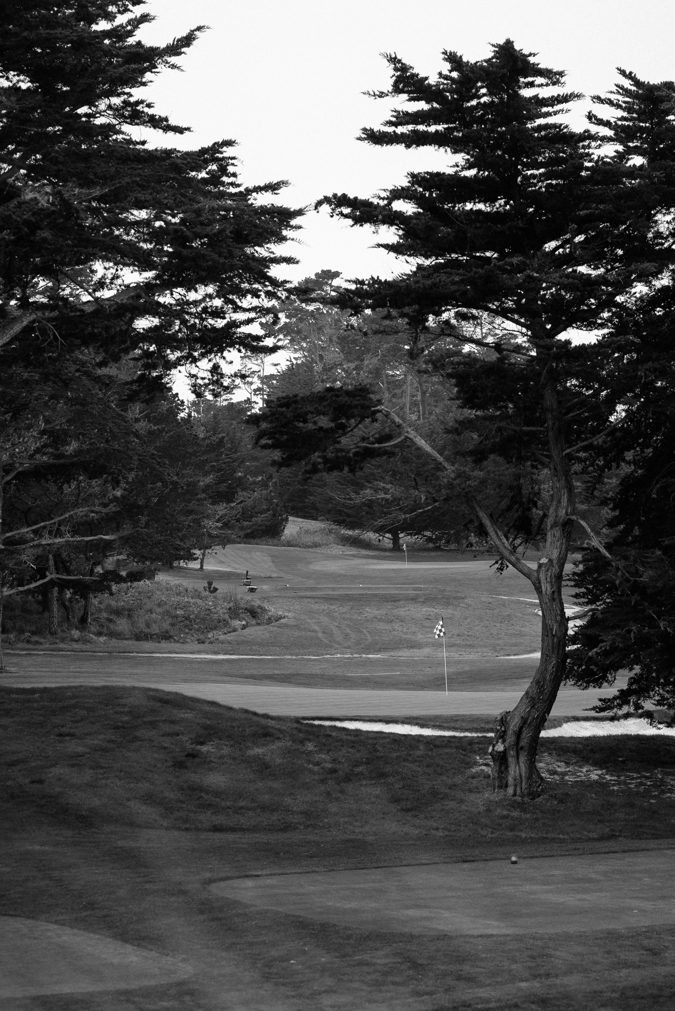 Cypress Point-9563.jpg