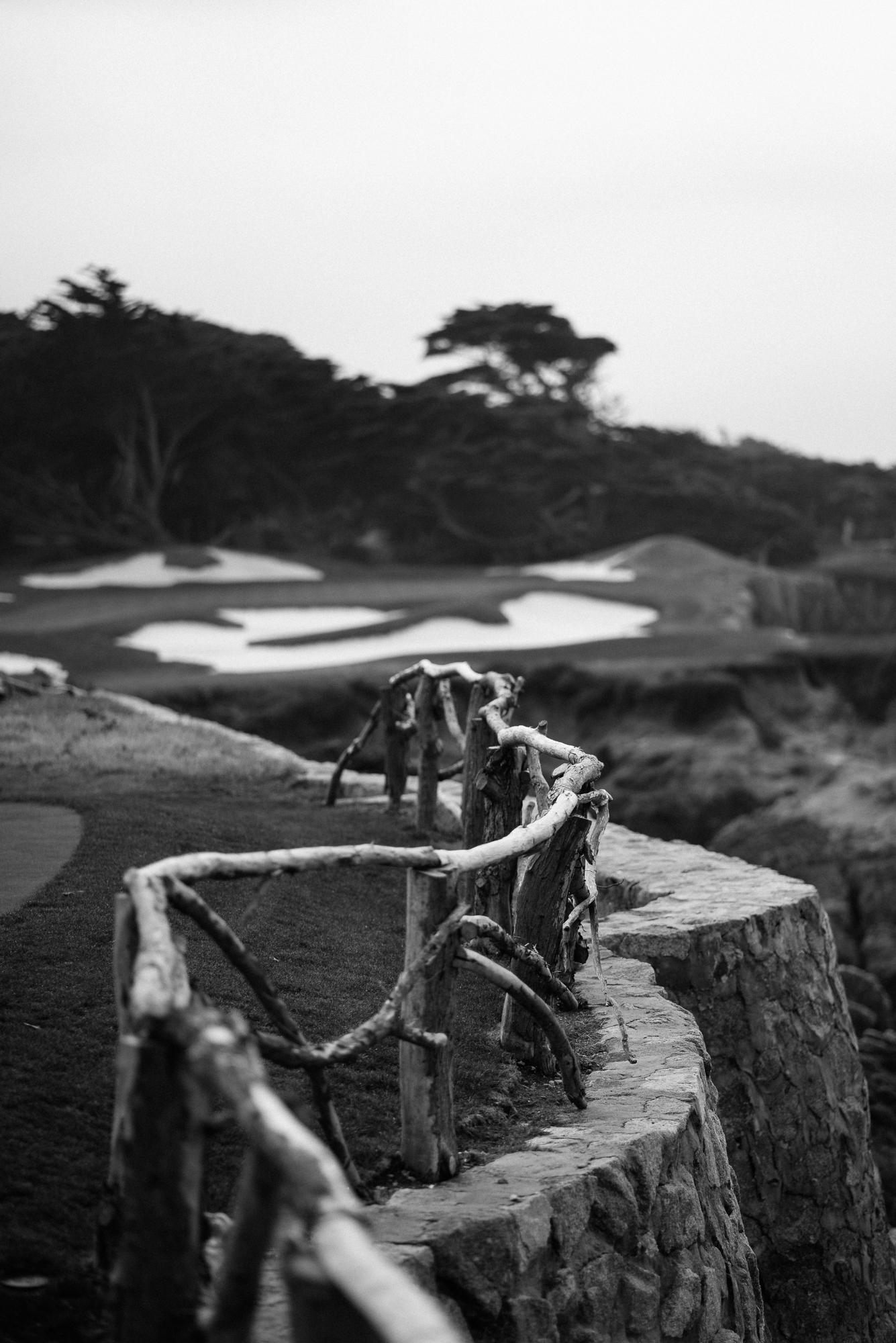 Cypress Point-9647.jpg