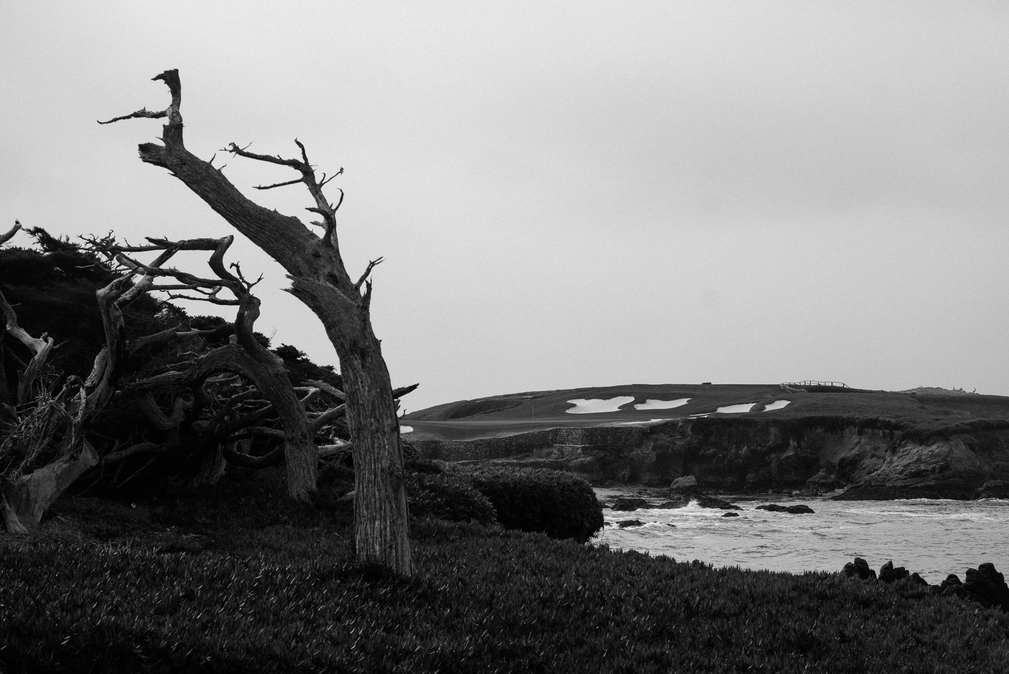 Cypress Point-9680.jpg
